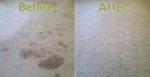 Simply Carpet & Upholstery Cleaning